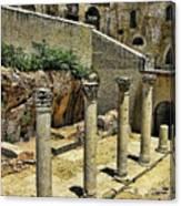 Excavations Canvas Print