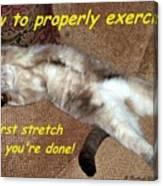 Exercise 101 Canvas Print