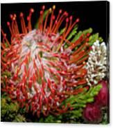 Exotic Bouquet Canvas Print