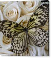 Exotic Butterfly On White Roses Canvas Print