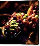 Exotic Fruit Platter Canvas Print
