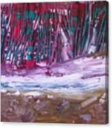 Exotic Landscape  Canvas Print