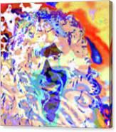 Expansion 104  Canvas Print