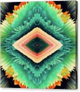 Exponential Flare Canvas Print