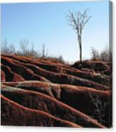 Exposed And Eroded Badlands Canvas Print