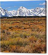 Extended Willow Flats Panorama Canvas Print