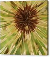 Extreme Dandelion Canvas Print