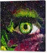 Eye And Butterflly Vegged Out Canvas Print