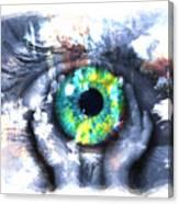 Eye In Hands 002 Canvas Print