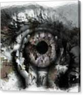 Eye In Hands Canvas Print