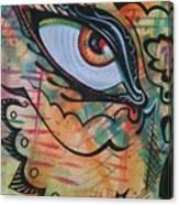 Eye In Orange Canvas Print