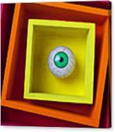 Eye In The Box Canvas Print