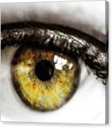 Eye Macro3 Canvas Print