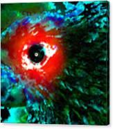 Eye Of Paradise Canvas Print