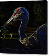 Eye Of The Crane Canvas Print