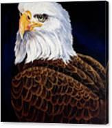 Eye Of The Eagle Canvas Print