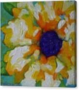 Eye Of The Flower Canvas Print