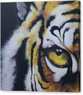 Eye Of Tiger Canvas Print