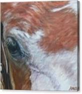 Eye Paint Canvas Print