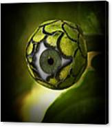 Eye Will See You In The Garden Canvas Print