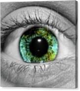Eyeball Canvas Print