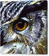Eyes Of Owls No.25 Canvas Print
