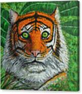 Eyes Of The Tiger Canvas Print