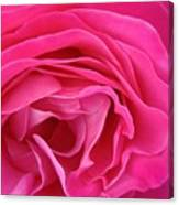 Fabric Of Rose Canvas Print