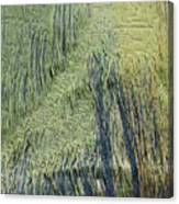 Fabric Texture Canvas Print
