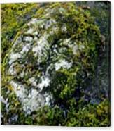 Face In The Stone Canvas Print