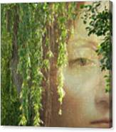 Face In The Willows Canvas Print