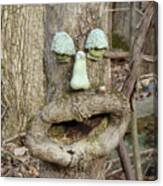 Face In The Woods Canvas Print
