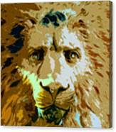 Face Of The Lion Canvas Print
