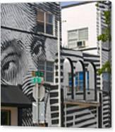 Face On House Canvas Print