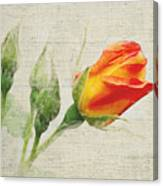 Faded Floral 9 Canvas Print
