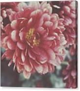 Faded Florals Canvas Print