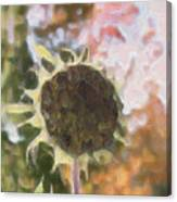 Faded Flower Canvas Print