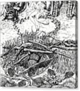 Fairy Dance Dragon Eggs Canvas Print
