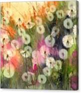 Fairy Dandelions Fields Canvas Print