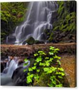 Fairy Falls In Spring Canvas Print