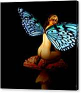 Fairy Takes A Second Look Canvas Print