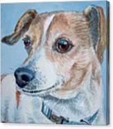 Beloved Dog Commission By Irina Sztukowski  Canvas Print