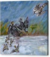 Falcon Attack  Canvas Print