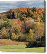 Fall '10 Canvas Print