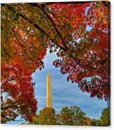 Fall 2015 Washington Dc Canvas Print