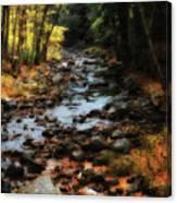 Fall Along Tenant Creek Canvas Print