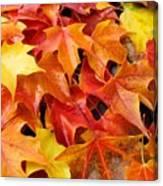 Fall Art Prints Red Orange Yellow Autumn Leaves Baslee Troutman Canvas Print