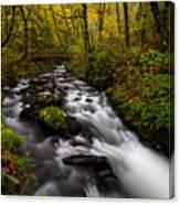 Fall At Bridal Veil Creek Canvas Print