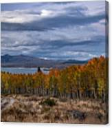 Fall At Hilton Creek Canvas Print