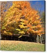 Fall At Kanuga Canvas Print